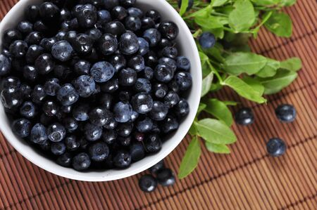 Blueberries in white bowl with blueberry twigs closeup photo