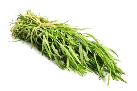 tarragon: Fresh tarragon herb bunch isolated on white background. Stock Photo