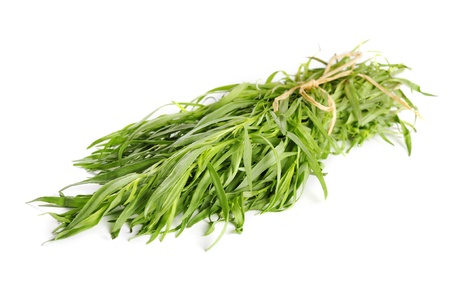 tarragon: Fresh tarragon herb bunch isolated on white background. Stock Photo