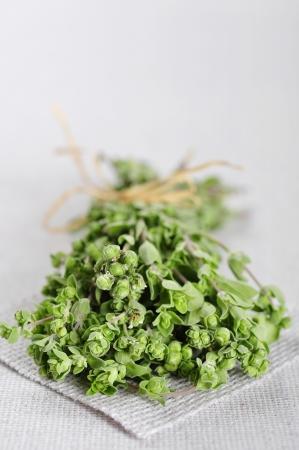 origanum: Bunch of blooming marjoram herb closeup on beige tablecloth