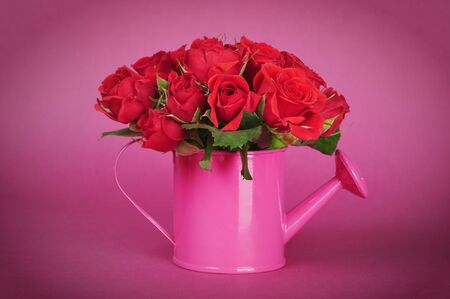 bouquet of red roses in a pink watering can on a pink background photo