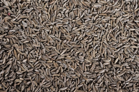 Cumin seeds texture, may used as background photo