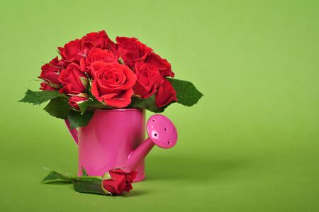 bouquet of red roses in a pink watering can on a green background photo