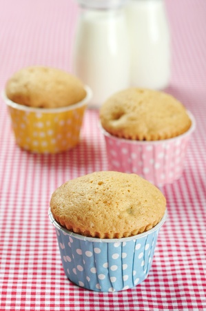 three muffins in colorful muffin cases on red checkered background photo