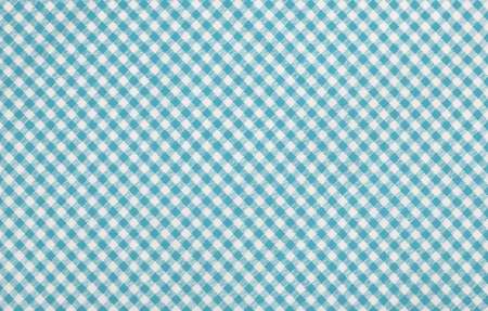 blue checkered fabric closeup , tablecloth texture Stock Photo - 18409536