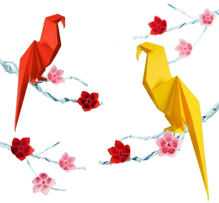 Origami parrots on a branches trees with flowers isolated on white background photo