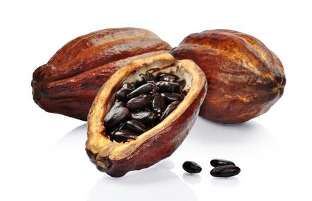 Vers fruit cacao geïsoleerd op een witte achtergrond
