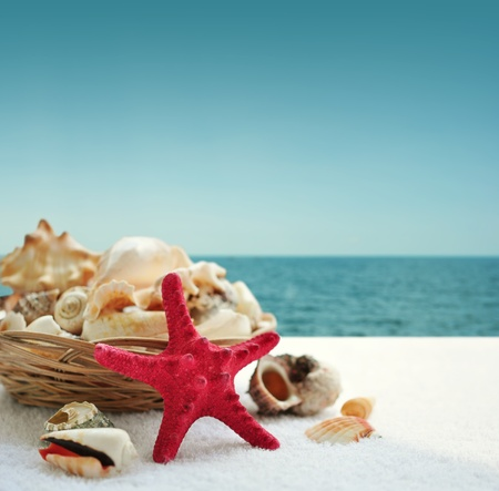 Starfish and seashells on the beach with blue sky photo