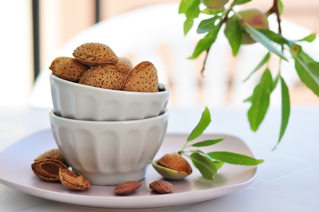 unpeeled: unpeeled almonds nuts in ceramic bowl with  twigs of almond tree Stock Photo