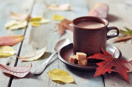 Kop warme chocolademelk met bruine suiker op houten achtergrond
