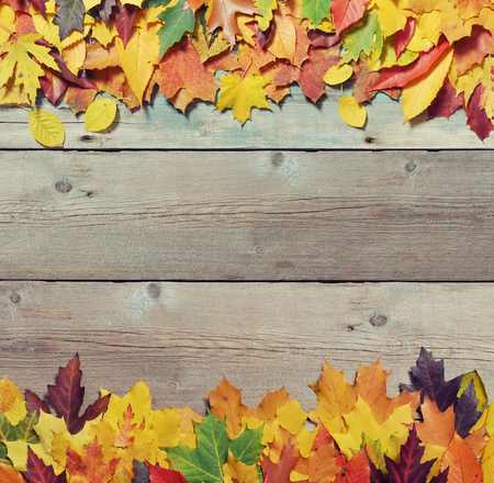 Autumn leaves in row on vintage wooden background  photo