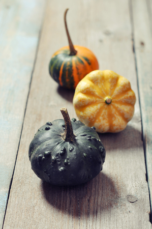 Three small decorative pumpkins over wooden background photo