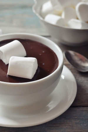 Hot chocolate with marshmallows on wooden background  photo