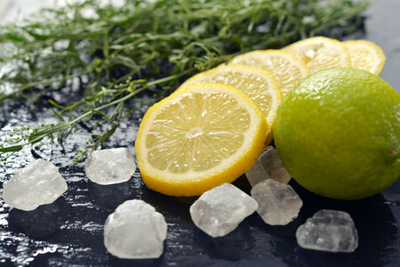 tarragon: Fresh tarragon with lemon, sugar and lime on black wet background Stock Photo