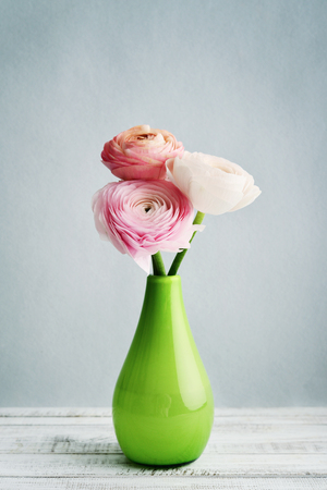 Persian buttercup flowers (ranunculus) bouquet in vase on blue background
