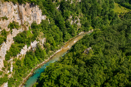 Mountain river Tara and forest in Montenegro. View from Durdevica arc bridge.