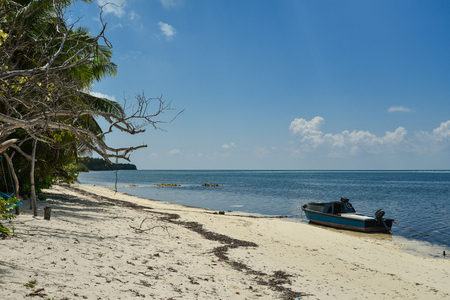 Beautiful beach with trees and fishing boat. Summer vacation travel holiday background concept.