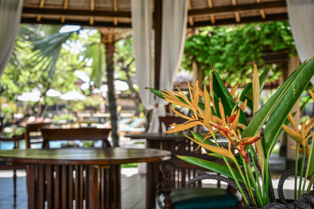 Pavilion with beautiful Strelitzia flowers  in luxury resort on Bali island