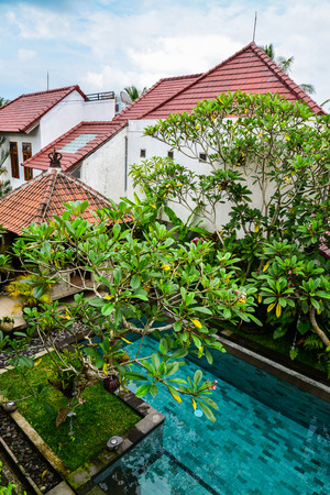 Garden on back yard with swiming pool and cozy gazebo near traditional balinese house for rent, Ubud, Indonesia