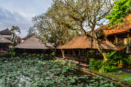 Empty cafe and pond with lotus near Pura Taman Kemuda Saraswati Temple in Ubud, Bali island, Indonesia Reklamní fotografie