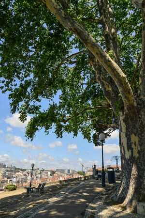 The Torel Garden (Jardim do Torel) at sunny day in the city of Lisbon, Portugal.