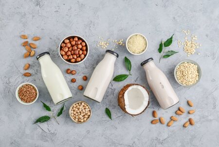 Assortment of ingredients for organic vegan non dairy milk in bowls and bottles with vegan milk on concrete a kitchen table, top view