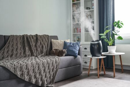 Ultrasonic cool mist humidifier for home on a small table in living room