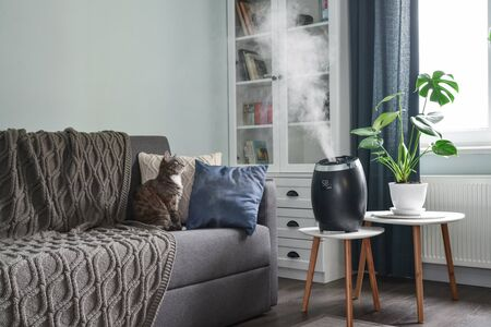 Ultrasonic cool mist humidifier for home on a small table in living room  Фото со стока