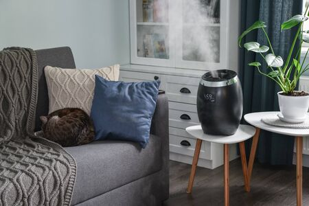 Ultrasonic cool mist humidifier for home on a small table in living room closeup
