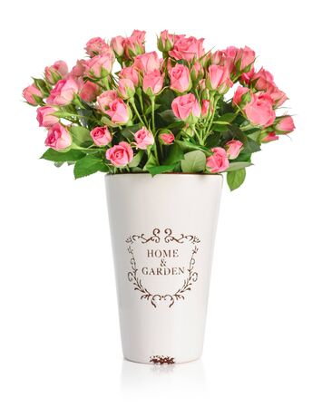 Bouquet of pink roses in a white vase isolated on white background.