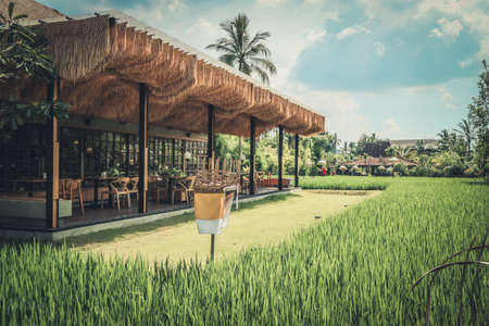Empty cafe on Bali island with rice field vew at the morning Foto de archivo
