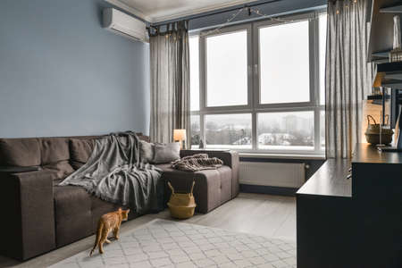 Light cozy  appartment with panoramic windows,  brown sofa and blue walls at winter time