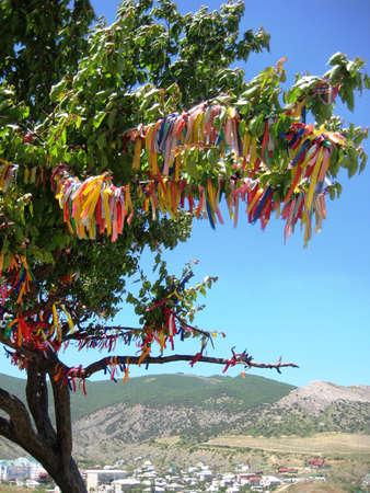 wish: Wish tree in crimea Stock Photo