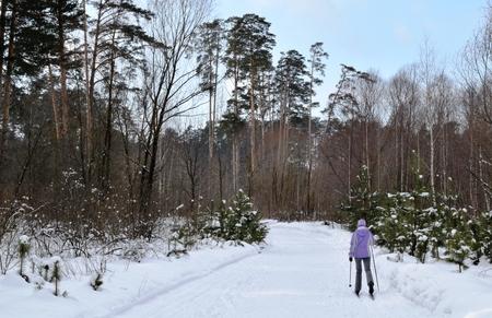 amateur: paseo esquiador aficionado en el bosque