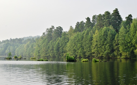 Russian landscape at lake in summer day