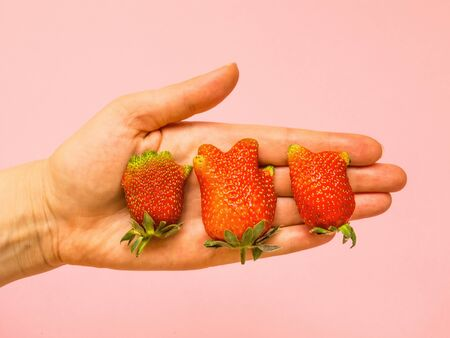 Ugly food: unusual strawberry in a woman hands