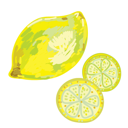 gash: Lemon artistic sketch  Illustration