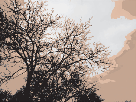 sillhouette: Sillhouette of trees in the autumn sky Illustration