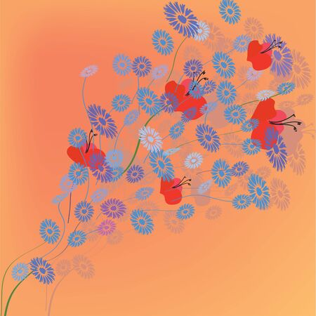 Greeting card with summer flowers cornflower and poppy Vector