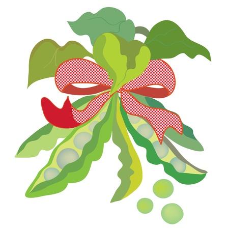 Funny pea wit bow cartoon Vector