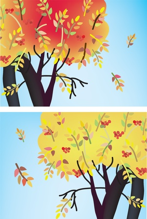 Fall trees banners with leaves and berries Stock Vector - 10468797