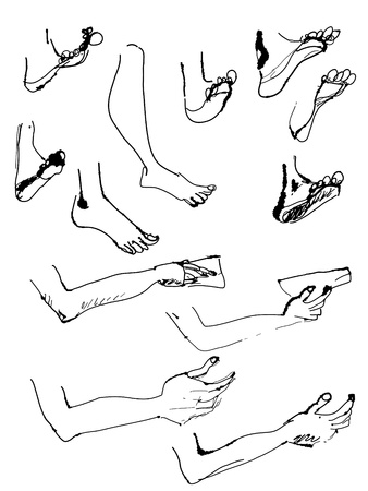legs up: Sketches of arms and legs artistic Illustration