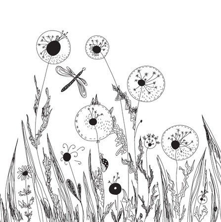 Dandelions and grass nature card graphic Vector