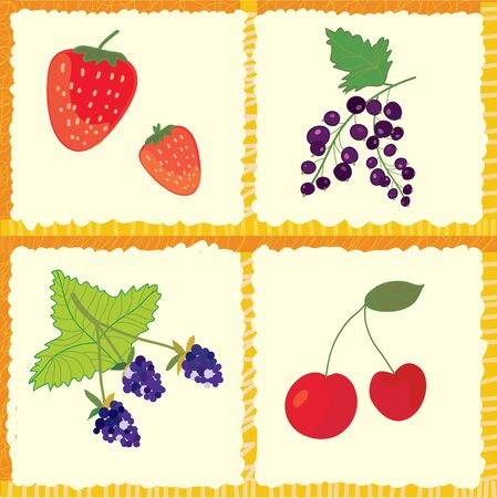 Berry and fruits seamless pattern checked design Stock Vector - 16824441