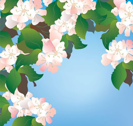 Apple blossom background with sky and leaves Stock Vector - 17105992