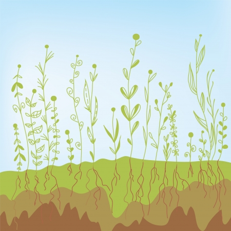 deep roots: Grass growth with roots in the soil - agricultural illustration Illustration