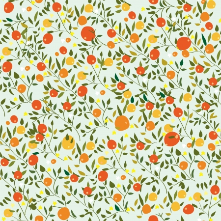 Oranges fruits seamless pattern with flowers Vector