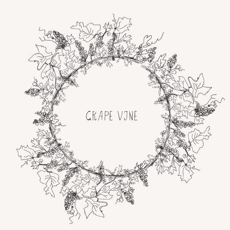 boarder: Grape vine sketch frame round label Illustration