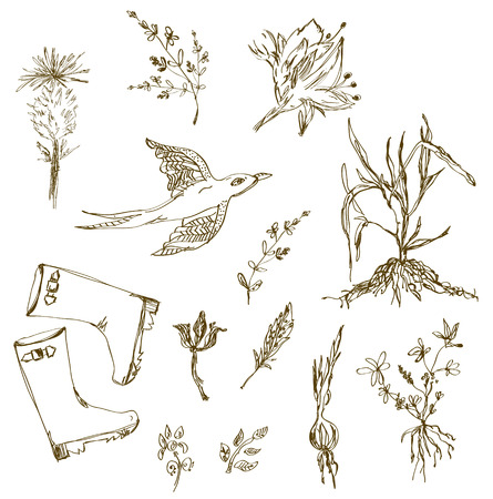 gumboots: Garden herbs sketch with birds, plants, gumboots sketches Illustration