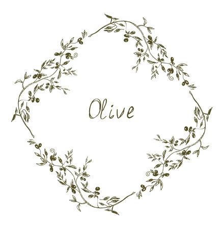 Disegnata illustrazione design del telaio Olive mano Archivio Fotografico - 28463106